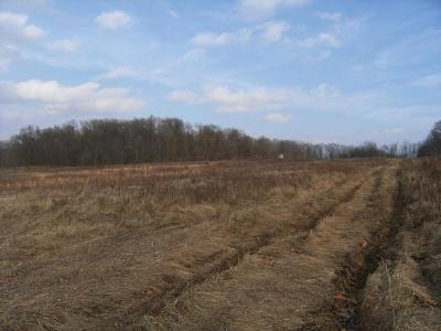 Utica Residential Lots & Land Contingent Finance And Inspect: Ewart Road #5.001