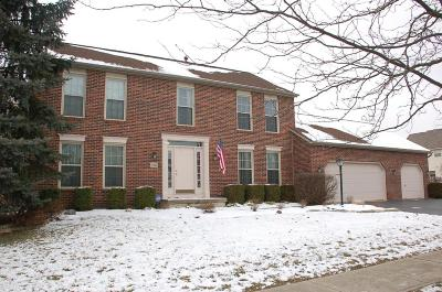Hilliard Single Family Home For Sale: 2925 Groff Place