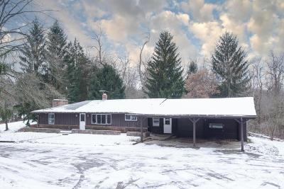 Single Family Home For Sale: 3485 Us Highway 23 N