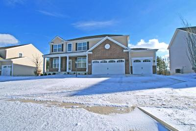 Plain City Single Family Home Contingent Finance And Inspect: 10053 Wintercreeper Court
