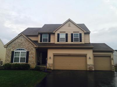 Galena Single Family Home For Sale: 6670 Falling Meadows Drive