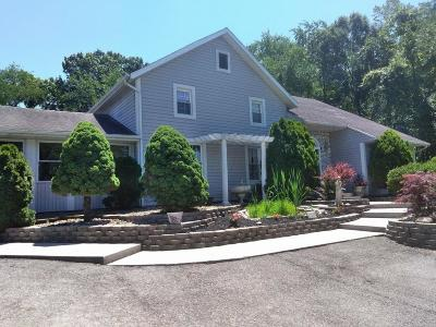 Newark Single Family Home For Sale: 12135 Marne Road