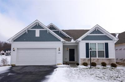 Pickerington Single Family Home For Sale: 12224 Rooster Tail Drive