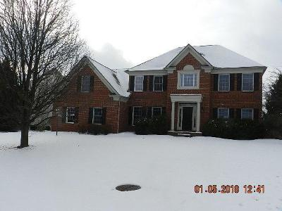 Westerville Single Family Home For Sale: 7720 Marsh Blue Court