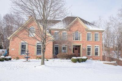 Pickerington Single Family Home Contingent Finance And Inspect: 13233 Waterton Drive