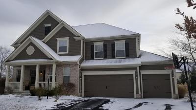 Dublin Single Family Home For Sale: 6705 Mill Springs Court