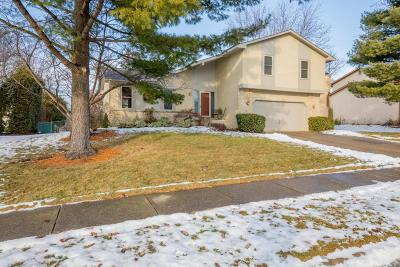 Westerville Single Family Home For Sale: 1072 Bryan Drive