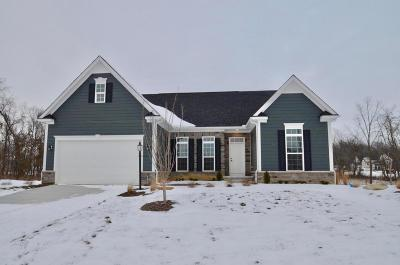 Single Family Home For Sale: 6469 Alum Creek Drive