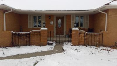 Grove City Single Family Home For Sale: 3183 Scenic Way