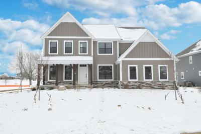 Dublin Single Family Home For Sale: 6489 Dicesare Loop #Lot 73