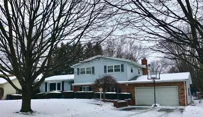 Lancaster Single Family Home Contingent Finance And Inspect: 2166 Sunnyhill Drive NE