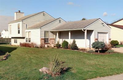Single Family Home For Sale: 1918 Limetree Drive