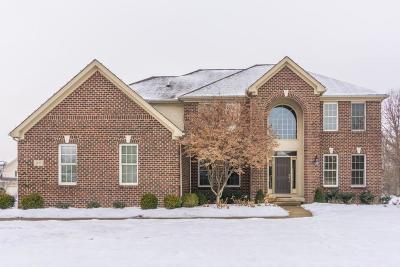 Blacklick Single Family Home For Sale: 1625 Eagle Glen Drive