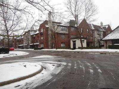 Dublin Condo For Sale: 6175 Craughwell Lane
