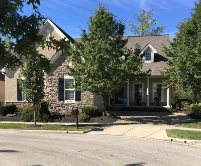 Dublin Single Family Home For Sale: 9039 Portofino Place