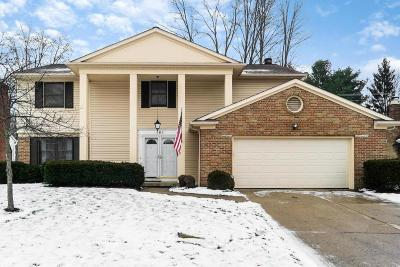Westerville OH Single Family Home Contingent Finance And Inspect: $274,900