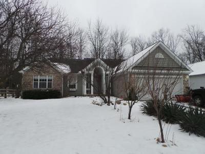 Delaware Single Family Home For Sale: 285 W Hull Drive