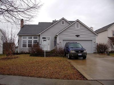 Hilliard Single Family Home For Sale: 5457 Hyde Park Drive