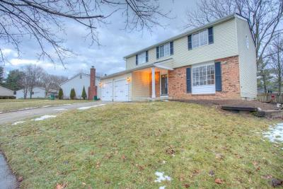 Dublin Single Family Home For Sale: 6814 Chesley Road