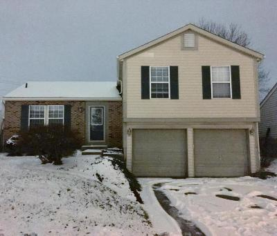 Reynoldsburg Single Family Home Contingent Finance And Inspect: 2872 Bannon Court