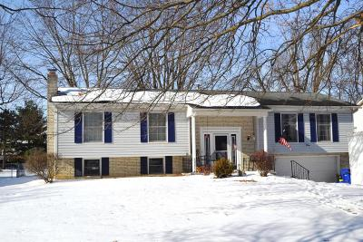 Delaware Single Family Home For Sale: 187 Westwood Avenue