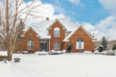 Galena Single Family Home For Sale: 9936 Hoover Woods Road
