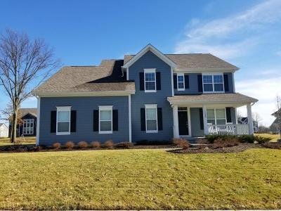 Pickerington Single Family Home For Sale: 13296 White Cross Drive