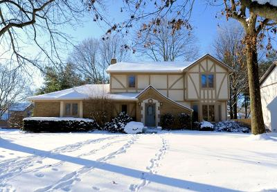 Westerville Single Family Home For Sale: 41 Executive Court