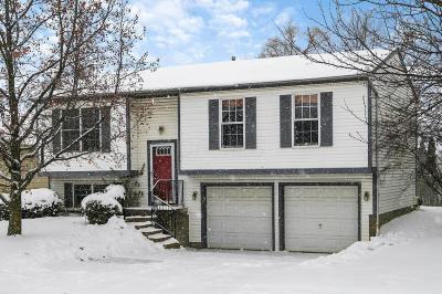 Columbus Single Family Home For Sale: 1038 Robmeyer Drive