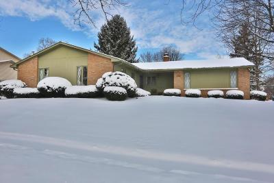 Columbus Single Family Home For Sale: 1174 Middleport Drive