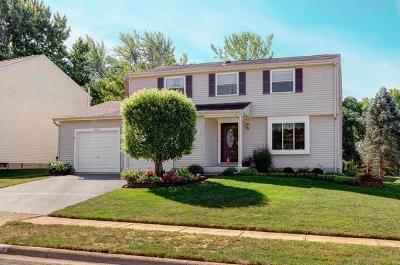 Dublin Single Family Home For Sale: 3107 Frobisher Avenue