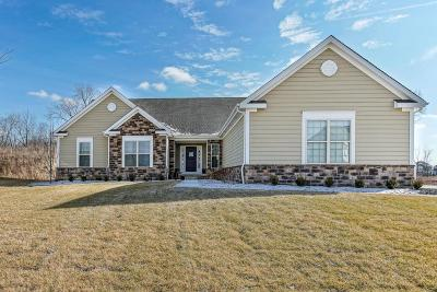 Hilliard Single Family Home For Sale: 3604 Sparrow Court