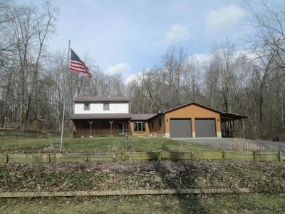 Single Family Home For Sale: 4440 Goose Road