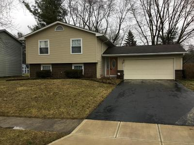 Pickerington Single Family Home Contingent Finance And Inspect: 370 Brandy Hill Avenue