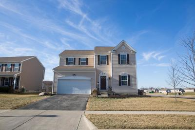 Johnstown Single Family Home Contingent Finance And Inspect: 111 Parkdale Drive