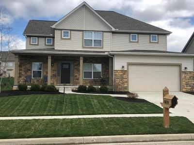 Plain City Single Family Home For Sale: 10250 Tuscany Drive