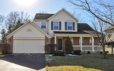 Reynoldsburg Single Family Home Contingent Finance And Inspect: 993 Sandrock Avenue