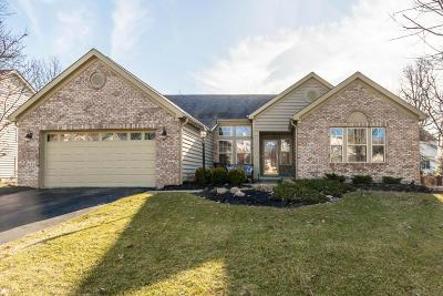 Westerville Single Family Home Contingent Finance And Inspect: 6261 Commonwealth Drive