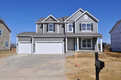 Lewis Center Single Family Home For Sale: 5372 Middlebury Loop #Lot 8332
