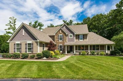 Delaware Single Family Home For Sale: 6765 Fall Brook Trail