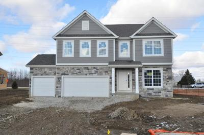 Lewis Center Single Family Home Sold: 5308 Louden Drive #Lot 8423