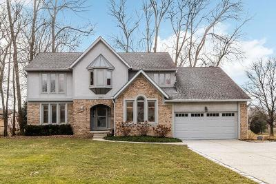 Pickerington Single Family Home Contingent Finance And Inspect: 9797 Hounsdale Drive