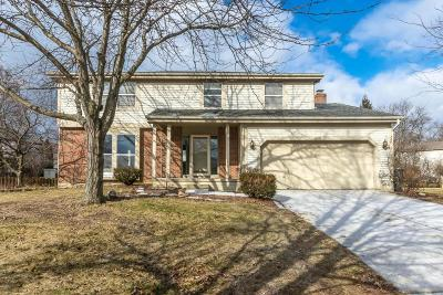 Hilliard Single Family Home Contingent Finance And Inspect: 5240 Calhoon Court