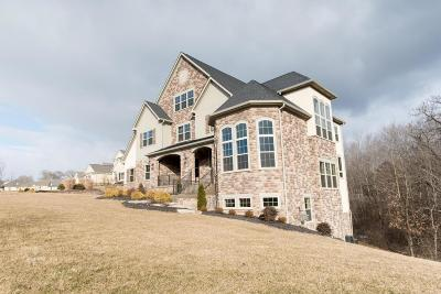 Delaware Single Family Home Contingent Finance And Inspect: 1118 Shale Run Drive
