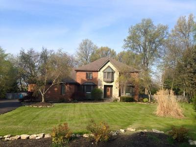 Columbus Single Family Home Contingent Finance And Inspect: 223 Chriswood Court