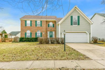 Grove City Single Family Home Contingent Finance And Inspect: 1401 River Trail Drive