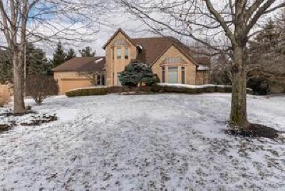 Pickerington Single Family Home Contingent Finance And Inspect: 8855 Chateau Drive