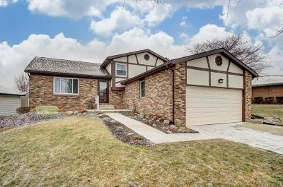 Marysville Single Family Home Contingent Finance And Inspect: 161 Collingwood Drive