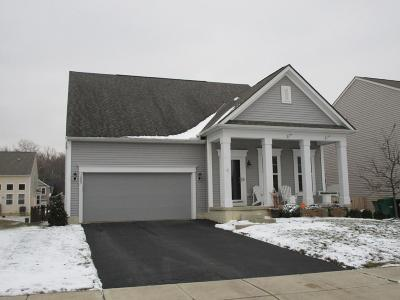 Blacklick Single Family Home Contingent Finance And Inspect: 7885 Headwater Drive