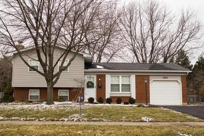 Grove City Single Family Home Contingent Finance And Inspect: 2600 Scott Court